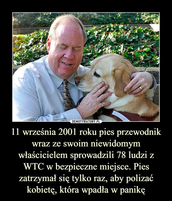 11 września 2001 roku pies przewodnik wraz ze swoim niewidomym właścicielem sprowadzili 78 ludzi z WTC w bezpieczne miejsce. Pies zatrzymał się tylko raz, aby polizać kobietę, która wpadła w panikę –