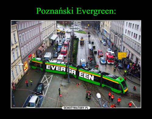 Poznański Evergreen: