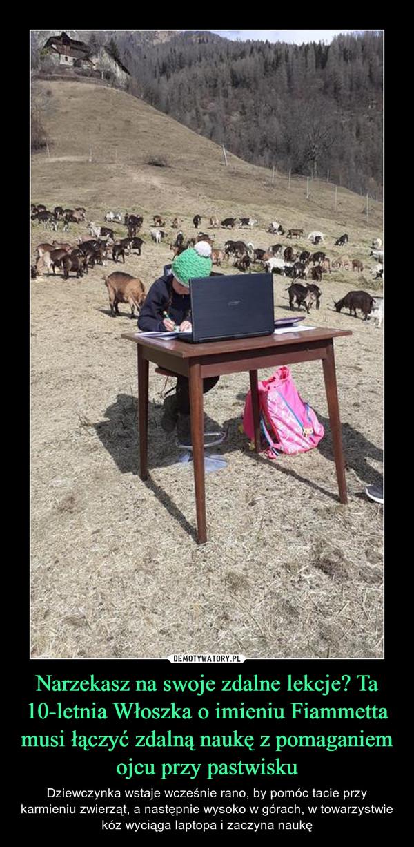 Narzekasz na swoje zdalne lekcje? Ta 10-letnia Włoszka o imieniu Fiammetta musi łączyć zdalną naukę z pomaganiem ojcu przy pastwisku – Dziewczynka wstaje wcześnie rano, by pomóc tacie przy karmieniu zwierząt, a następnie wysoko w górach, w towarzystwie kóz wyciąga laptopa i zaczyna naukę