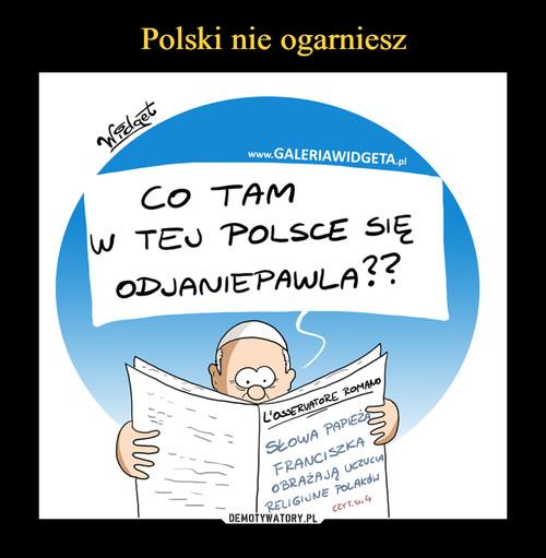 Polski nie ogarniesz
