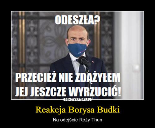 Reakcja Borysa Budki