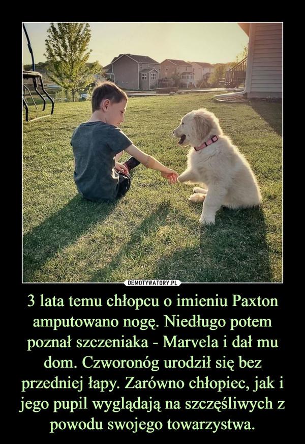 3 lata temu chłopcu o imieniu Paxton amputowano nogę. Niedługo potem poznał szczeniaka - Marvela i dał mu dom. Czworonóg urodził się bez przedniej łapy. Zarówno chłopiec, jak i jego pupil wyglądają na szczęśliwych z powodu swojego towarzystwa. –