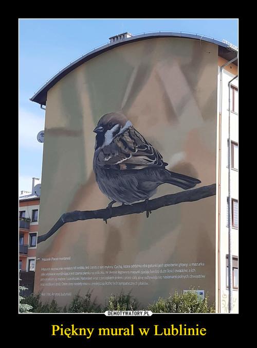 Piękny mural w Lublinie