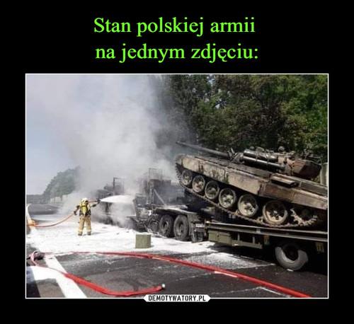 Stan polskiej armii  na jednym zdjęciu: