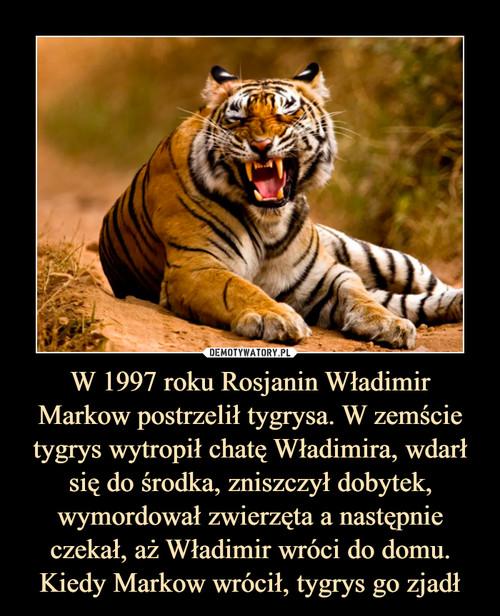 W 1997 roku Rosjanin Władimir Markow postrzelił tygrysa. W zemście tygrys wytropił chatę Władimira, wdarł się do środka, zniszczył dobytek, wymordował zwierzęta a następnie czekał, aż Władimir wróci do domu. Kiedy Markow wrócił, tygrys go zjadł
