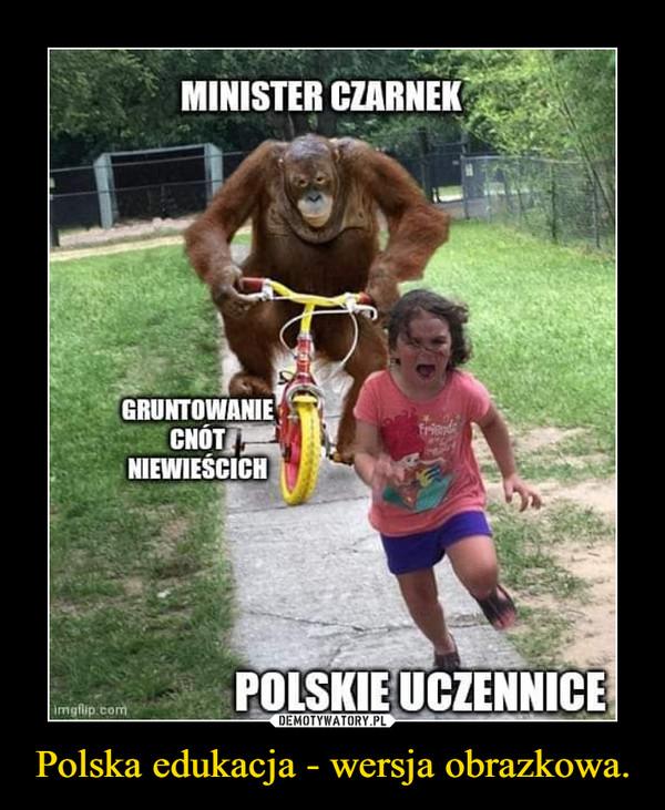 Polska edukacja - wersja obrazkowa. –