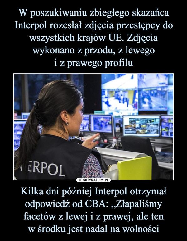 """Kilka dni później Interpol otrzymał odpowiedź od CBA: """"Złapaliśmy facetów z lewej i z prawej, ale tenw środku jest nadal na wolności –"""