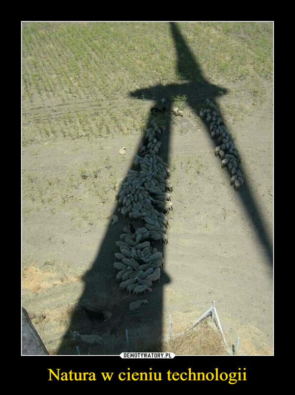 Natura w cieniu technologii –