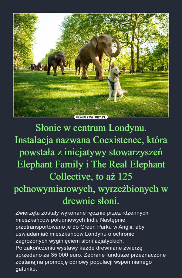 Słonie w centrum Londynu.Instalacja nazwana Coexistence, która powstała z inicjatywy stowarzyszeń Elephant Family i The Real Elephant Collective, to aż 125 pełnowymiarowych, wyrzeźbionych w drewnie słoni. – Zwierzęta zostały wykonane ręcznie przez rdzennych mieszkańców południowych Indii. Następnie przetransportowano je do Green Parku w Anglii, aby uświadamiać mieszkańców Londynu o ochronie zagrożonych wyginięciem słoni azjatyckich.Po zakończeniu wystawy każde drewniane zwierzę sprzedano za 35 000 euro. Zebrane fundusze przeznaczone zostaną na promocję odnowy populacji wspomnianego gatunku.