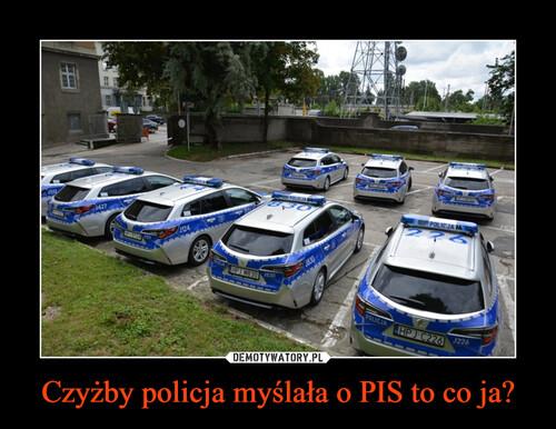 Czyżby policja myślała o PIS to co ja?