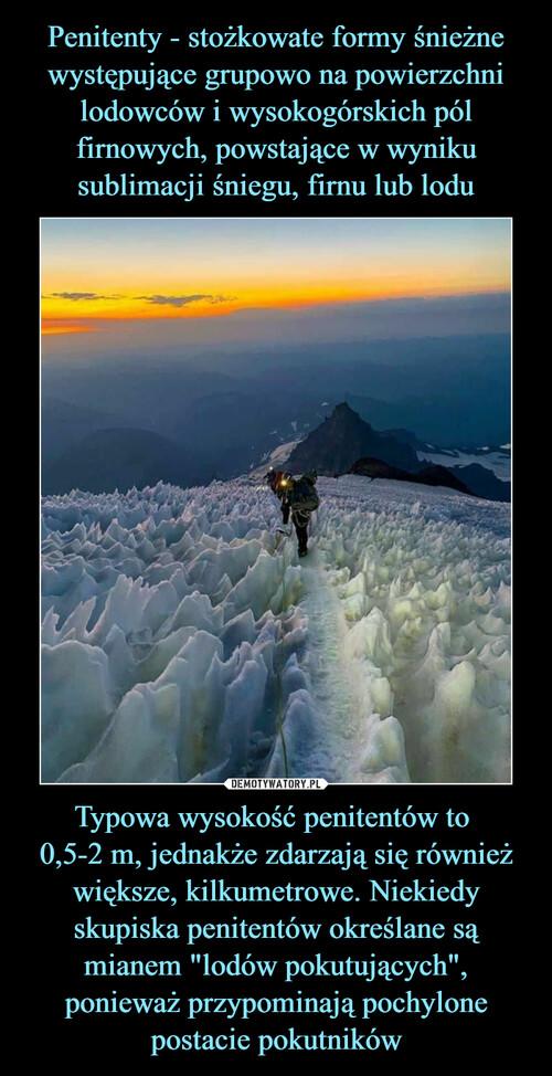 """Penitenty - stożkowate formy śnieżne występujące grupowo na powierzchni lodowców i wysokogórskich pól firnowych, powstające w wyniku sublimacji śniegu, firnu lub lodu Typowa wysokość penitentów to  0,5-2 m, jednakże zdarzają się również większe, kilkumetrowe. Niekiedy skupiska penitentów określane są mianem """"lodów pokutujących"""", ponieważ przypominają pochylone postacie pokutników"""