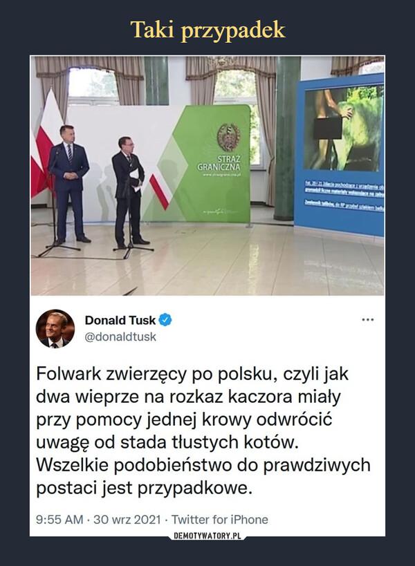 –  Donald Tusk@donaldtuskFolwark zwierzęcy po polsku, czyli jak dwa wieprze na rozkaz kaczora miały przy pomocy jednej krowy odwrócić uwagę od stada tłustych kotów. Wszelkie podobieństwo do prawdziwych postaci jest przypadkowe.9:55 AM · 30 wrz 2021·Twitter for iPhone