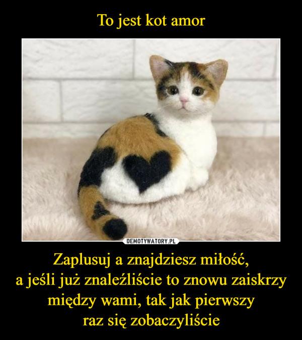 To jest kot amor Zaplusuj a znajdziesz miłość, a jeśli już znaleźliście to znowu zaiskrzy między wami, tak jak pierwszy raz się zobaczyliście